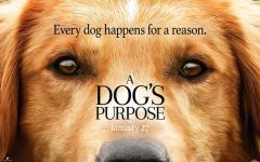 """A Dog's Purpose"" Review"