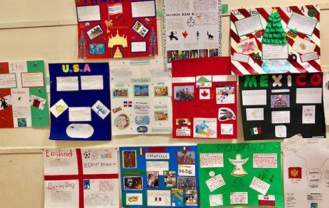 Third Grade Culture Project!