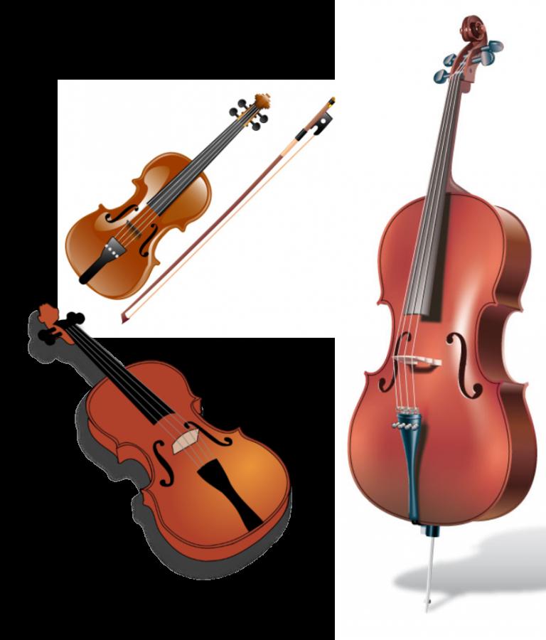 Third+Grade+Orchestra+Concert
