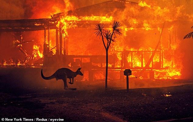 Australia+Wildfires+Update